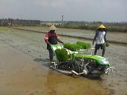 Alat Pertanian Modern : Transplanter
