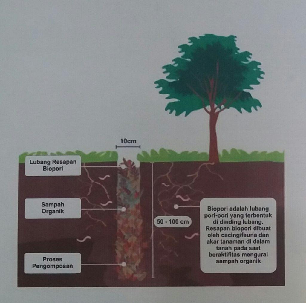 Biopori di Halaman Rumah