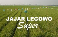 Supernya Jarwo Super
