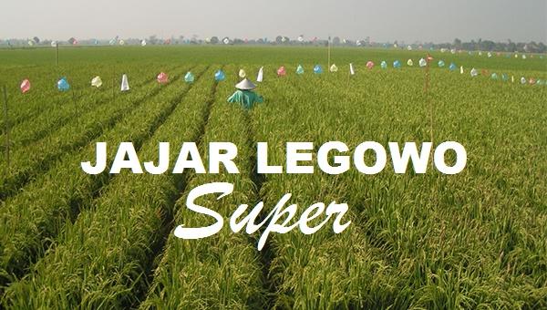 Supernya Jarwo Super