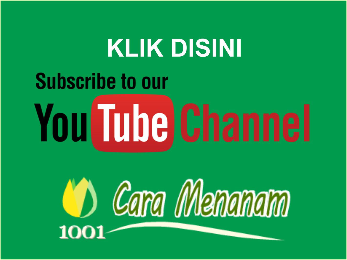Video 1001 Cara Menanam